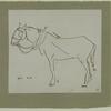 Sketch of horse on North Marshall Street. Image provided by National Museum of Jewish History