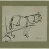 Sketch of horse with carriage on North Marshall Street. Image provided by National Museum of Jewish History