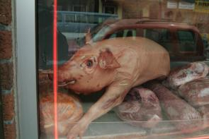 Dressed pig in Carniceria Diaz. Image provided by Historical Society of Pennsylvania