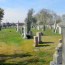 St Peter's Cemetery -- View