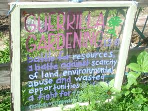 Plotland: Guerilla Gardening