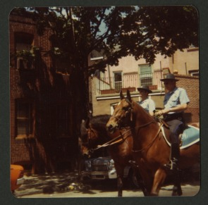 Our Lady of Angel's feast, 1978.  Horses leading the feast parade.