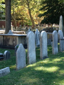 A view of the burial ground
