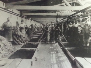 Interior view of vat room at Foerderer's leather factory
