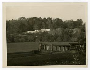 Morris Arboretum 3