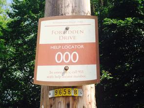 Forbidden Drive